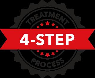 proven 4 step process icon