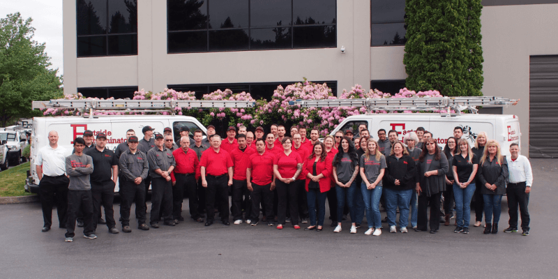 Our team of exterminators in Seattle